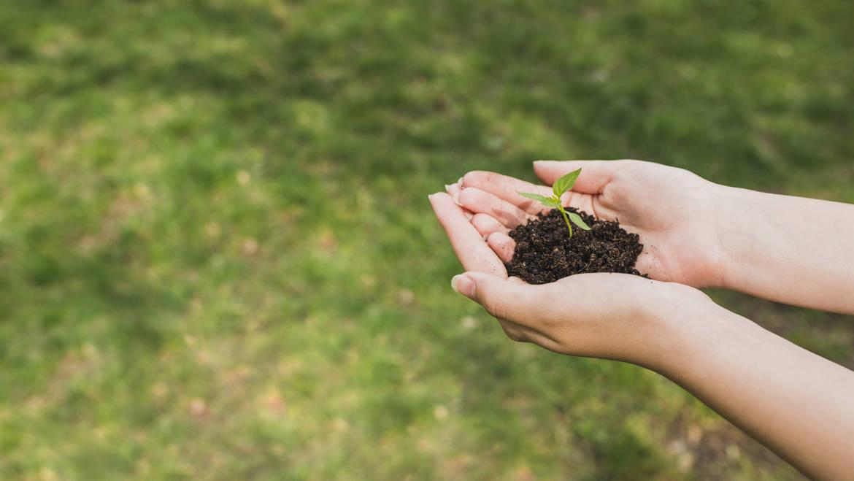 Basso Impatto Ambientale
